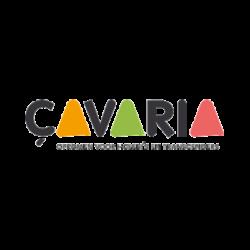 çavaria - opkomen voor holebi's en transgenders